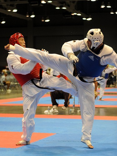 Fitness, Speed and Agility are all benefits of martial arts