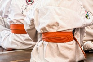 The Influence of Diet on Pain and Injury in Older Martial Artists