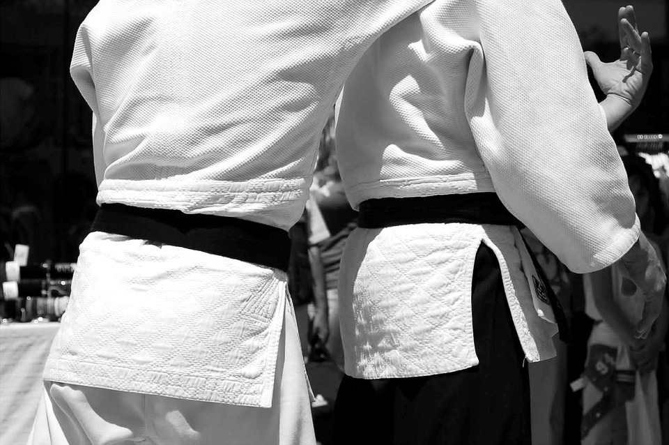 Martial Arts: A Blueprint For Good Living